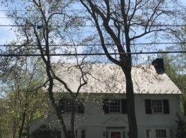 Best Rye Roof Washing & Pressure Cleaning