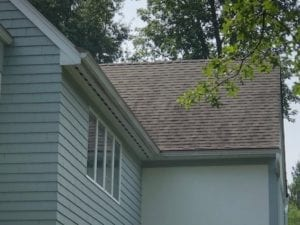 dirty shingle, asphalt roof soft washed, black marks, roof shampoo